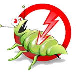 Pest Control South Delhi